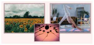 Dein innerer Sommer & der Vollmond – die Blütezeit der Frau